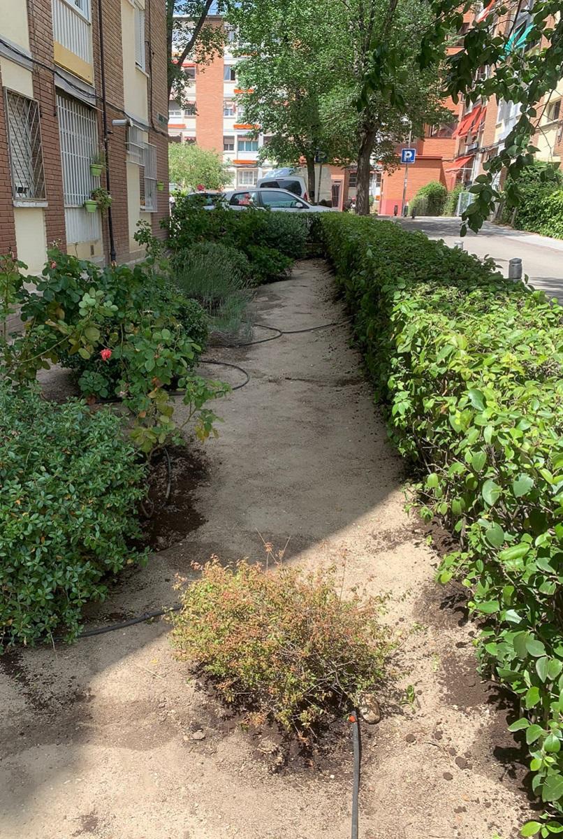 Jardinería en Madrid